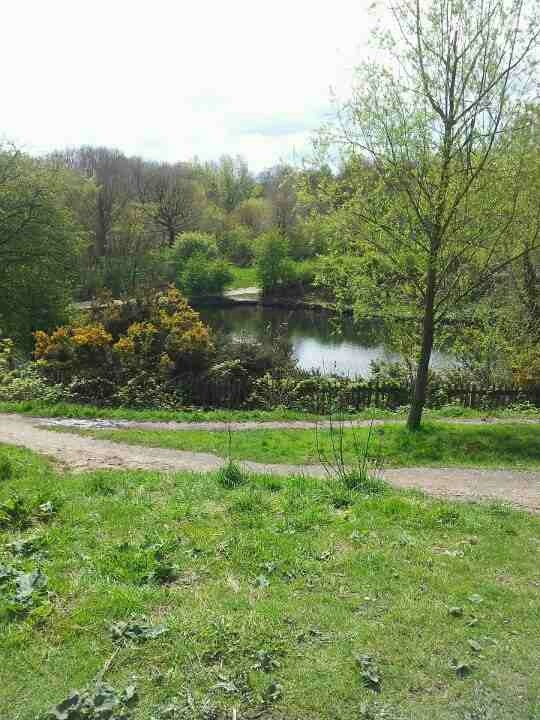 hampsteadpond