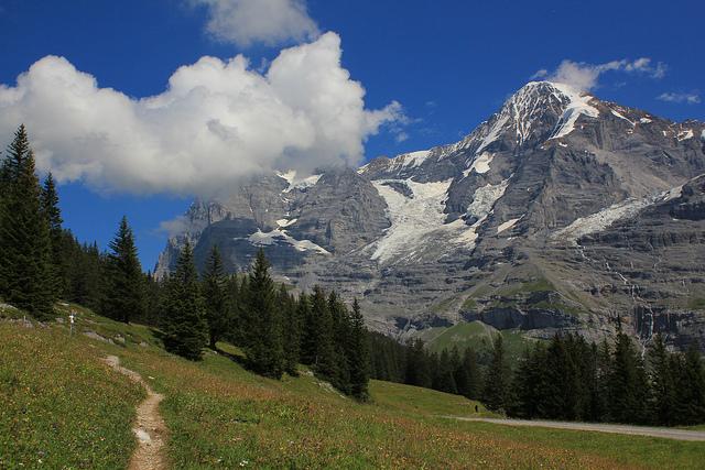 Swiss Alps Els